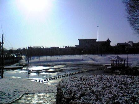 牛久雪景色