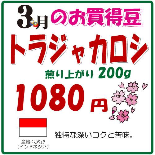 2015年3月のお買い得豆は「トラジャカロシ」