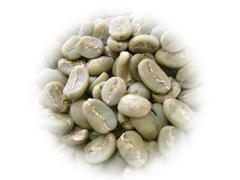 トラジャカロシ生豆